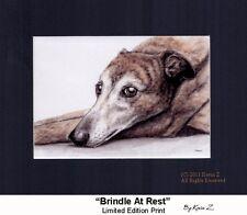 Greyhound Print Gorgeous Brindle At Rest Signed Art Artist Kevin Z Arttogo NEW