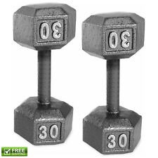 60 lb Pair of Barbell Cast Iron Hex Dumbbell Weights 30 lb Each