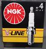 *8 Stk NGK V-Line 4 Zündkerze BP6E , 5637, VL4, Mitsubishi, VW, Lada, Subaru, #