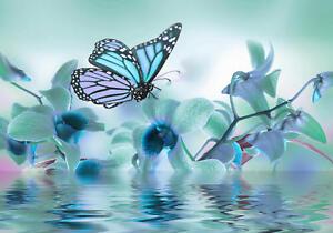 Fototapete Türkis Orchidee Schmetterling Wasser  Blumen Blüte purporrot Blüte