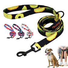 5ft Fashion Dog Leash With Handle Nylon Leads Lead for Small Medium Large Dogs