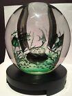 "Vintage ORREFORS Glass EDWARD HALD Aquarium GRAAL Fish VASE 5 1/2"" SIGNED 841B"