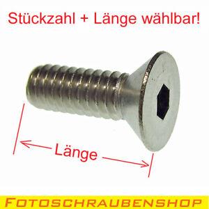 """1/4""""- Edelstahl-Senkkopfschraube / Kameragewinde (Menge und Länge wählbar)"""