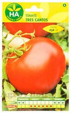 Tomate Tres Cantos - 750 Semillas (2,5 g) - Sobre Hermético HA