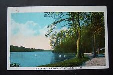 Greetings from Montague, Michigan vintage postcard