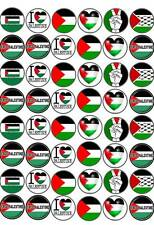 48 Palestine Flag Charity Fairy Cup Cake Bun Toppers Premium Wafer Rice Edible