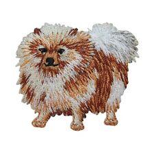 Id 2758 Pomeranian Spitz Toy Dog Breed Pet Puppy Animal Iron On Applique Patch