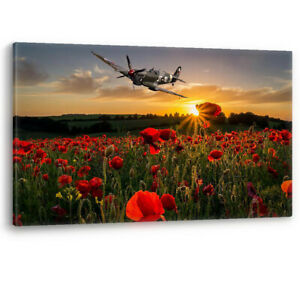 Poppy Field Spitfire Poppies Remembrance Sunday Canvas Wall Art Picture Print