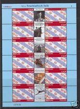 Nederland V2065  Friesland Provincievel 2002 gestempeld