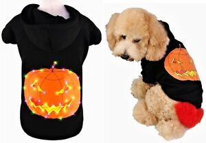 DOG New Pumpkin PULLOVER SWEATER With Hood - Light up Dress up Costume L, XL