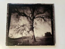 Daylight Breaking by No Motiv (CD, 2004, Vagrant)