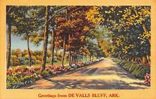 De Valls Bluff Arkansas~Flowers Along Gravel Road~Autumn Trees~1957 Linen Pc