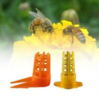 40Pcs Beekeeping Tools Cell Protector Cages Plastic Bee Queen Cage Protes Yellow