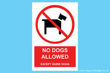 No Dogs Allowed Except Guide Dogs Vinyl Sticker H&S Health Safety Sign D001