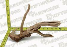 New ListingAquarium Driftwood Spider Wood Fish Medium Large Natural Branch Root Sinking
