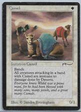 Magic MTG - Camel - Arabian Nights Original - VG