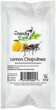 Insectes comestibles comestible bugs bush tucker lemon Chapulines 20g croquants critters