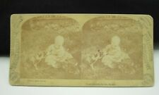 Antique Stereoview Card Baby Sharing Food With Kitty Cats by Geo. Barker 1890