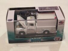 M2 MACHINES AUTO-TRUCKS R24: 1956 FORD F-100 1:64 BOXED Clear Case