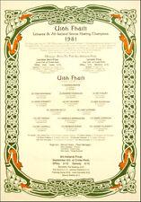 Offaly All-Ireland Senior Hurling Champions 1981: GAA Print