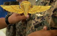 Marine Marines USMC Jump Wings 2 7/8 Inch Hat pin GOLD Badge