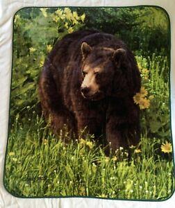 Bear Plush Blanket Throw 50x60 Northwest Daniel Smith
