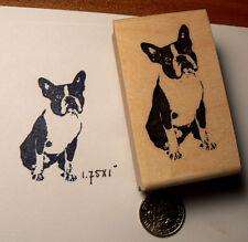 Miniature Boston Terrier rubber stamp P45
