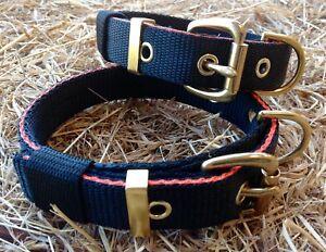 """TC13 Webbing Dog Collar 1"""" Terrier/Lurcher/Gundog/Hound/Spaniel"""