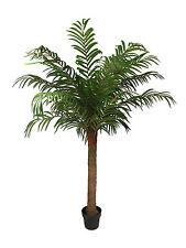 Artificial 5ft / 150cm Robellini Palm Tree Large Faux Tropical Palm Plant