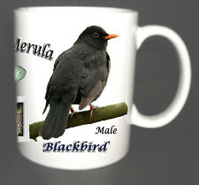 BLACKBIRD GARDEN BIRD MUG LIMITED EDITION XMAS GIFT NEW, BRITISH BIRDS *