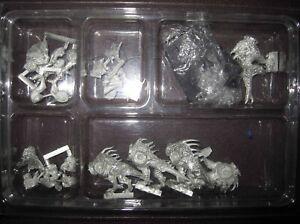 Warhammer Fantasy Battles Daemons of Chaos Fleshhounds of Khorne regiment OOP