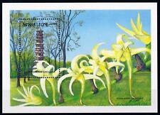 [67122] Sierra Leone 1989 Flora Flowers Blumen Orchids Souvenir Sheet MNH