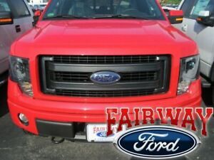 09 thru 14 F-150 OEM Ford Parts Paint-to-Match FX4 FX2 Grille with Emblem