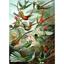 250 Pieces Thick Wooden Jigsaw Puzzle / Hummingbirds