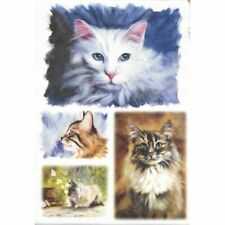 Papier de riz 22x32 cm Chats Decoupage Collage Scrapbooking Carterie