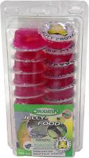 Dragon Jelly Food Fruchtnektar - Sorte: VIOLET GRAPE - Menge: 50 Stück