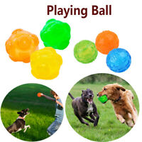 Pet Supply Interactive Dog Chew Toys Puppy Cat Training Pet Rubber Balls Squeak