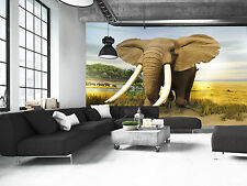 Elephant  Wall Mural Photo Wallpaper GIANT DECOR Paper Poster Free Paste