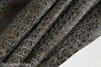 Titan CROC Leather cowhide remnant Appx 3 sqft K21D2-5