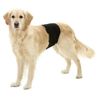 Hundeschutzhose Inkontinenz Markierschutz Rüdenbinde Windel Gentleman Wraps Plus