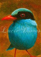 Art Print 5x7 Bird 54 blue from original painting by L.Dumas