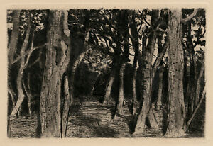 WALTER LEISTIKOW, 'BAUMGRUPPE (GROVE OF TREES)', drypoint, c. 1896