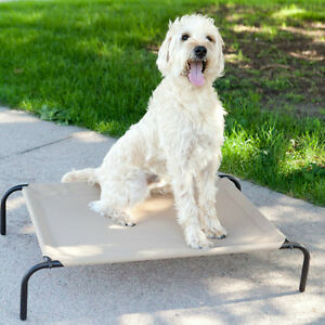 Boomer Elevated Dog Bed like Coolaroo - Two Sizes & Two Colors - Fast Shipping