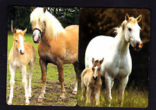 WIDE Swap/Playing Cards - Beautiful Mares with their Foals x 2