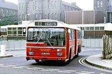 London Transport MS2 PGC202L 6x4 Bus Photo Ref L178B
