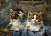 Canvas Print Picture Two cute kittens Oil Painting HD printed on canvas L047