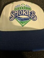 Knoxville smokies Toronto Blue Jays affiliate minor leauge baseball hat fitted