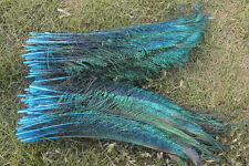 10pcs sky blue peacock feather 12-14 inch left and right sides symmetrical new