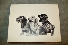 Dachshund Pen and Ink Stationary Cards, Note Cards, Greeting Cards. 10 pack.