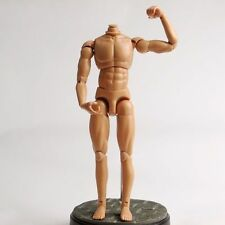 "Dragon 1/6 Hard Plastic Nude Muscle Male Body Figure Toy 12"" Men Action Figure"